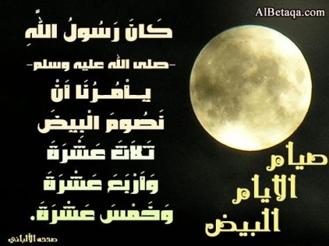 ٢٠١٢١١٢٤-٠٧٥٥٢٩.jpg